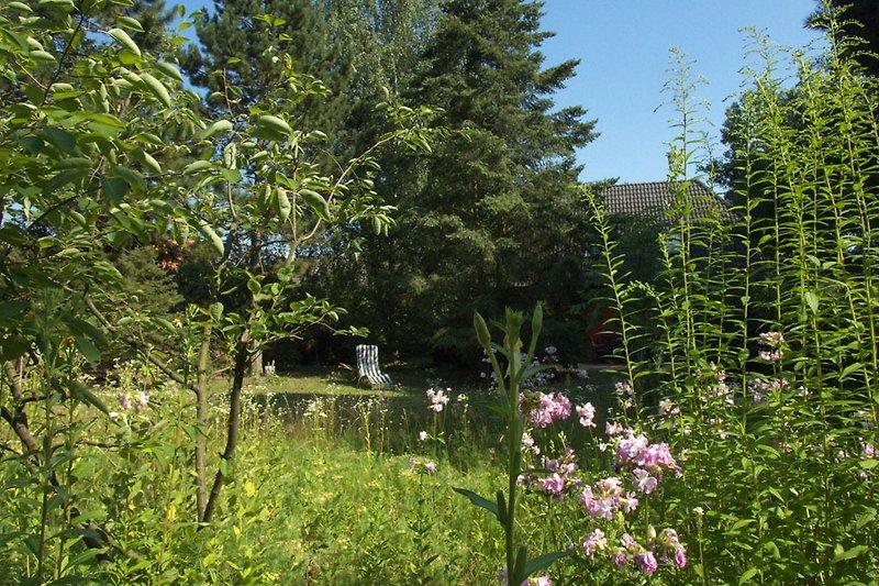 Lauschig: Der große Garten