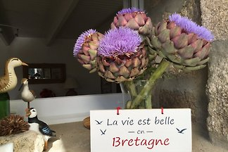"ADORABLE MAISON BRETONNE "" TY COZ"""