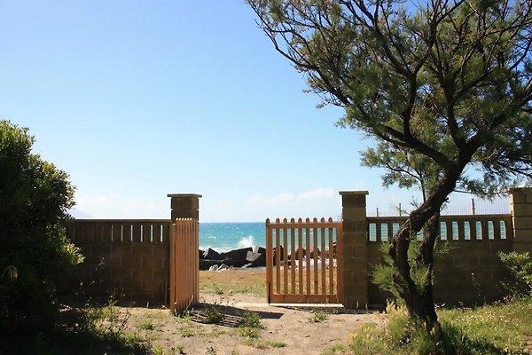 Villa sul mare à Terme Vigliatore - Image 1