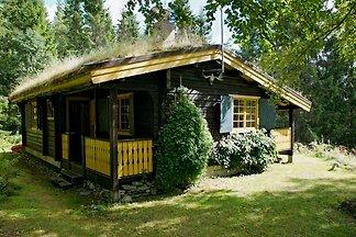 Schönes Blockhaus bei Fredros