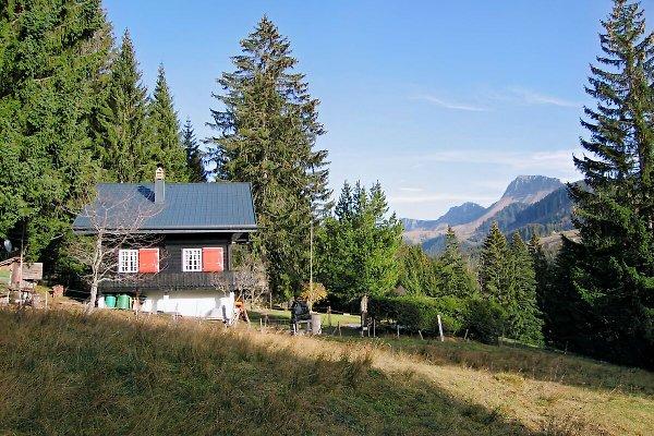 MärchenwaldChalet  auf der Alp in Les Paccots - immagine 1