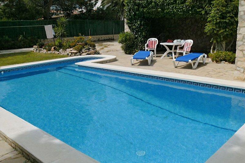 Pool+Garten