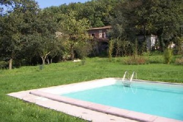 FARMHOUSE WITH POOL - 7 Pers. in Lucca - Bild 1