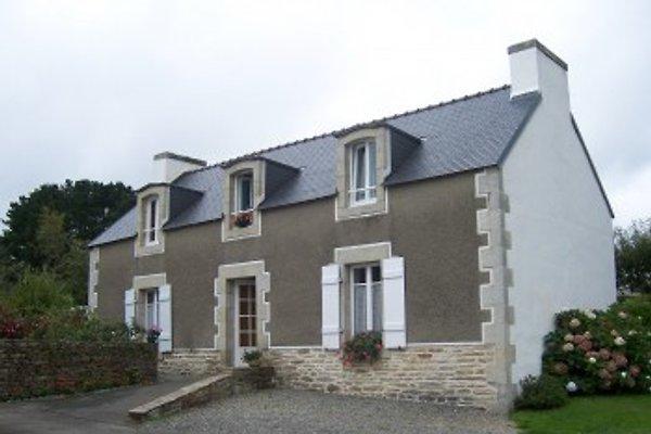 Ti-Laëz à Concarneau - Image 1
