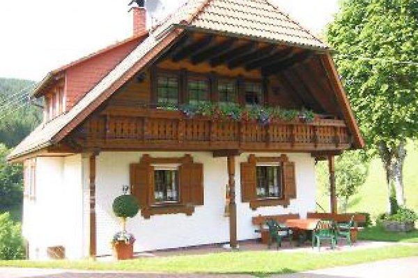 Schwarzwaldhaus Rose mit Pool in Fischerbach - immagine 1