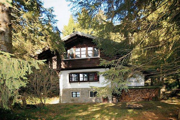 Jagdhütte im Wald (umzäunt) en Viechtach - imágen 1
