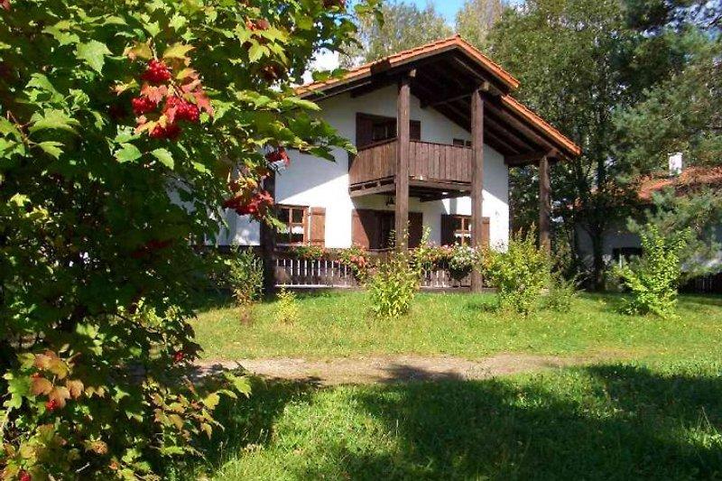 Ferienhaus Johannisbusch