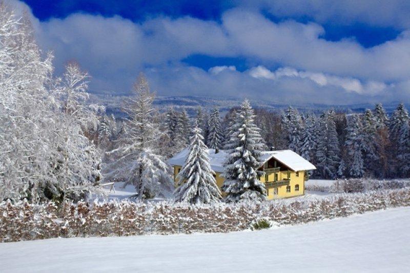 Ferienhaus Landhaus St.Oswald im Winter