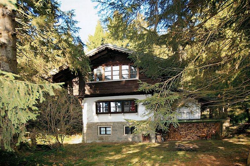 Jagdhütte im Wald (umzäunt) à Viechtach - Image 2