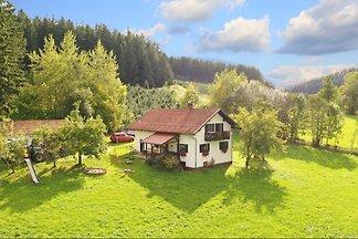 Ferienhaus Haflingerhof in herrlicher, hoher Alleinlage! Mit Trampolin, Angelmöglichkeit in den eigenen Fischteichen! Sowie kostenlosen Zugang zum Fitneßstudio mit Sauna.