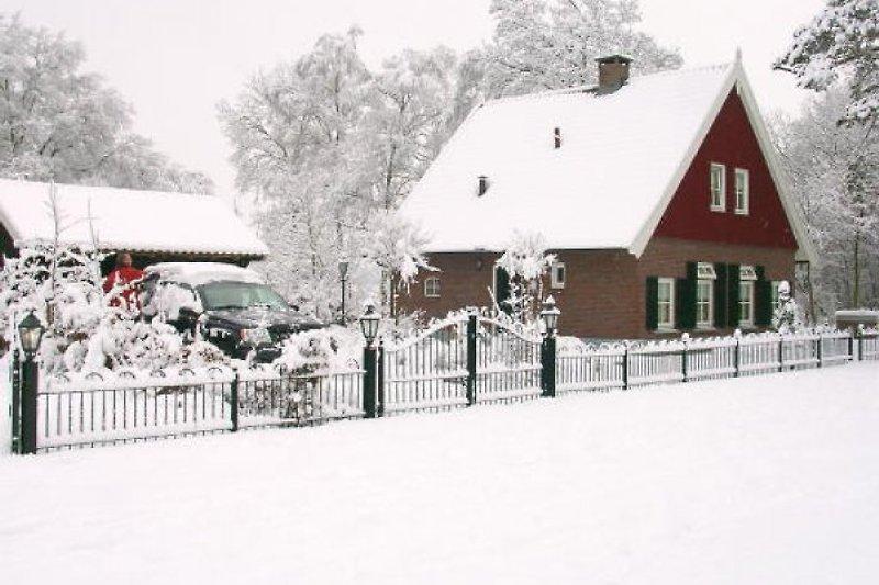 Auch schön im Winter
