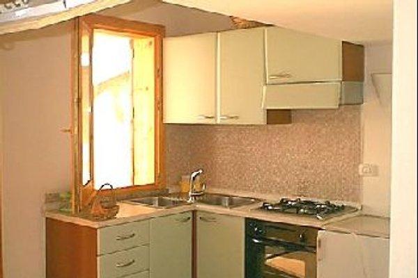 Appartamenti Anna in Capo Vaticano - immagine 1