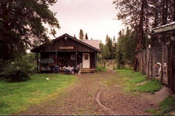 FERIENHAUS in Nord Lappland en Lappland - imágen 1
