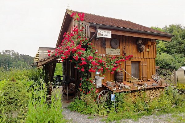 Ferienbijou Sitterblick in Eberswil - immagine 1