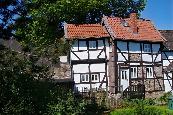 Ferienhaus am Solling in Dassel - immagine 1