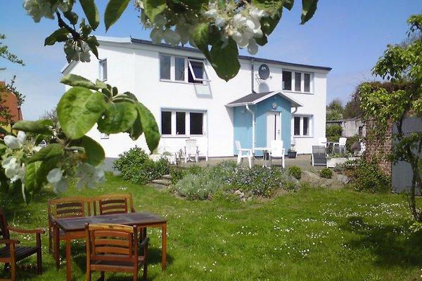 Das Witte Hus mit Terrasse und Garten