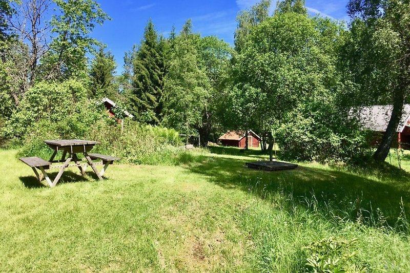 Garten, Gartentisch, Gästehaus, zukünftige Sauna, Scheune
