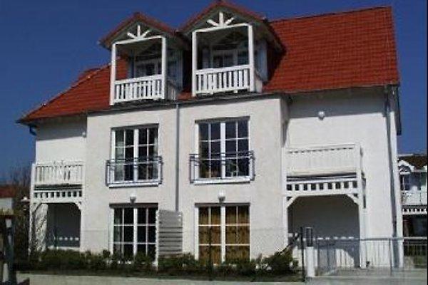 Appartement Molli in Kühlungsborn - immagine 1