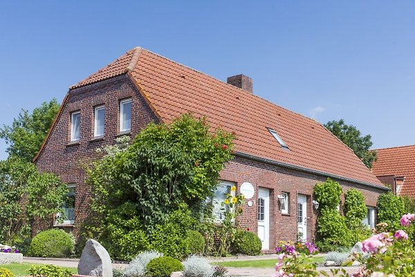 Haus Wiesenblick 2-4 und 2-6 Pers. in Werdum - Bild 1