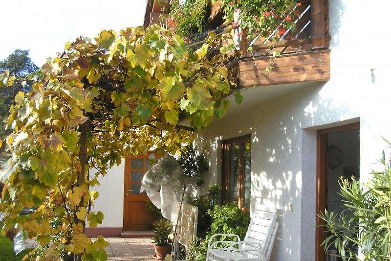 Terrassenappartement mit Weinlaube