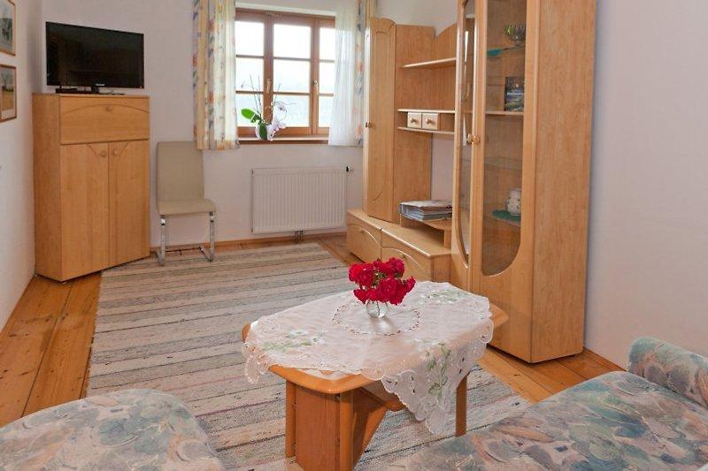 Wohn-Schlafzimmer mit TV