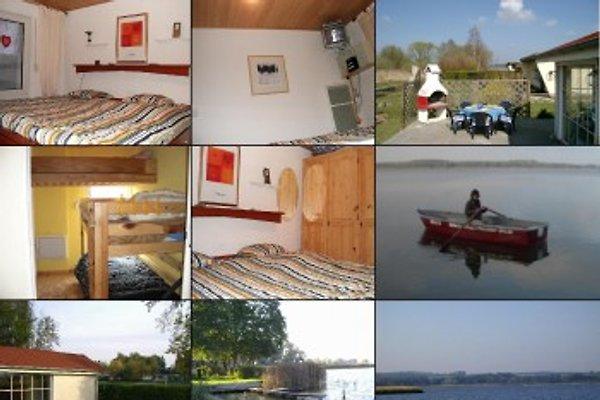 Ferienhaus Malchiner See in Dahmen - Bild 1