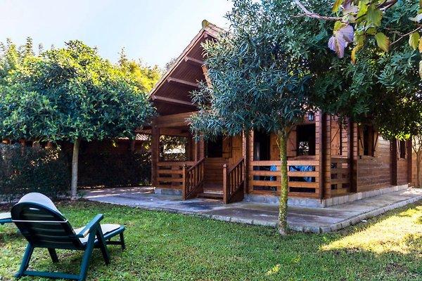 Miramar El Palmar - Haus 2 in El Palmar - Bild 1