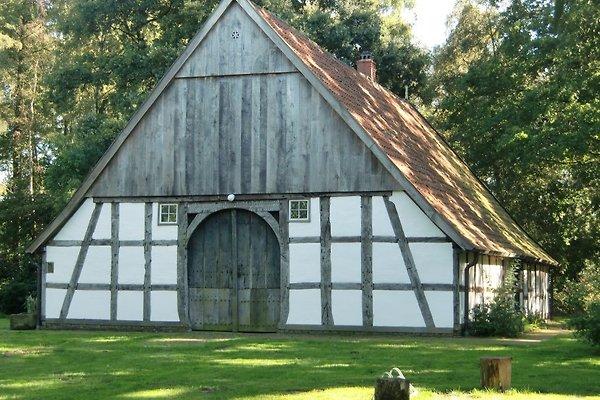 Heuerhaus Beuke im Artland in Badbergen im Artland - immagine 1