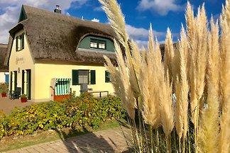 Vakantiehuis in Breege
