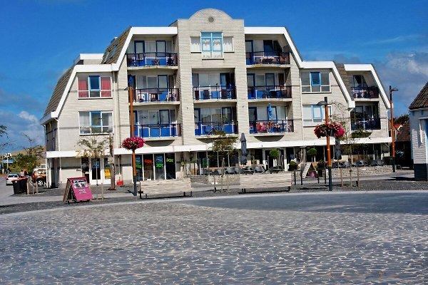 Petten Beach House Settentrionale in Petten aan Zee - immagine 1