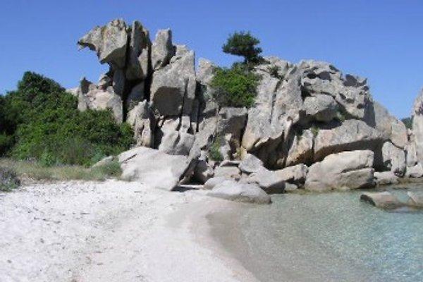 Ferienhaus avec plage reservče à Cala Girgolu - Image 1