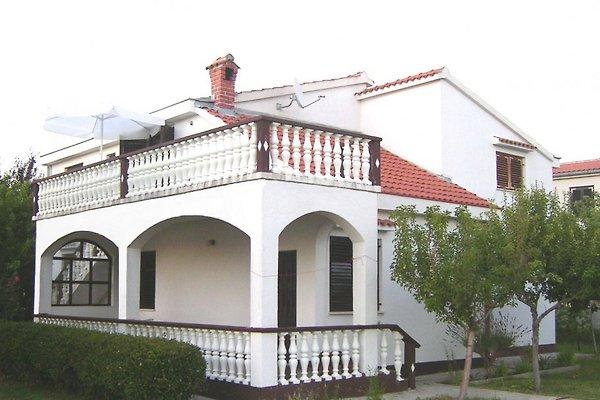 Villa Ana, Zukve en Mulo - imágen 1