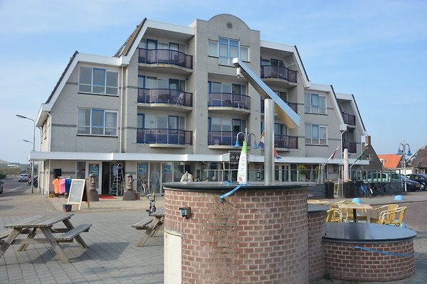 Petten Beach à Petten aan Zee - Image 1