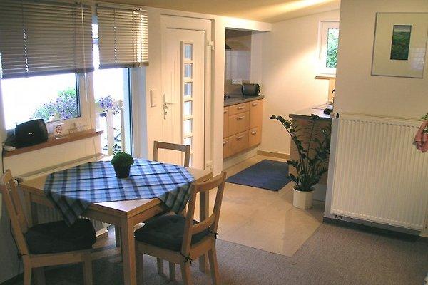 apartment holunderblick ferienwohnung in speyer mieten. Black Bedroom Furniture Sets. Home Design Ideas