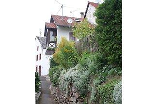 Eifel Ferienhaus umzaunter Garten