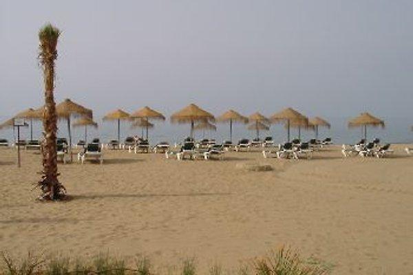 Marriott Playa Andaluza  à Estepona - Image 1