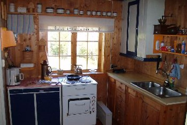 Aspen Hütte mit Boot am See - Hütte in Mesnali mieten