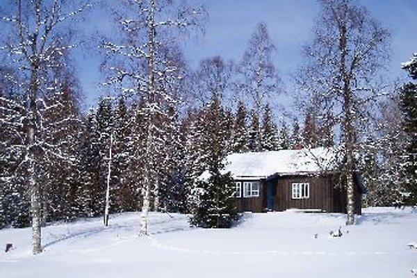 Aspen Hütte mit Boot am See in Mesnali - immagine 1