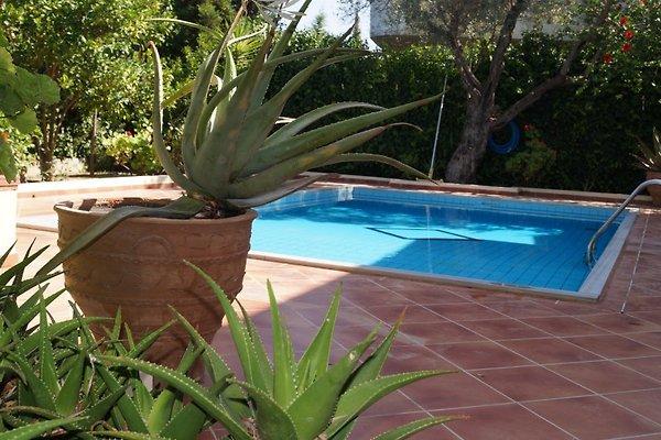 Holiday home  Villa Aphrodite en Pitsidia - imágen 1