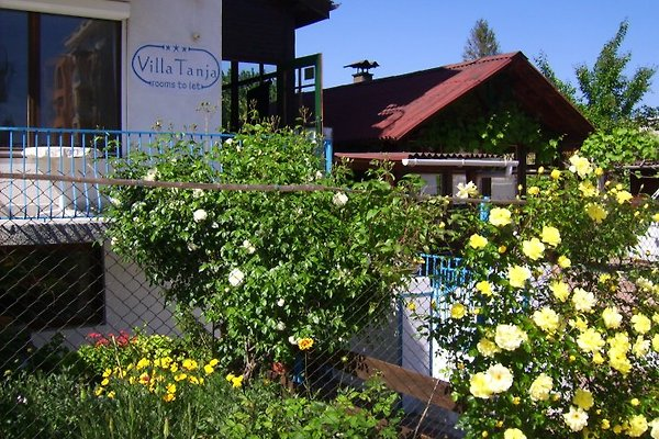 Ferienvilla Tanja im Mai