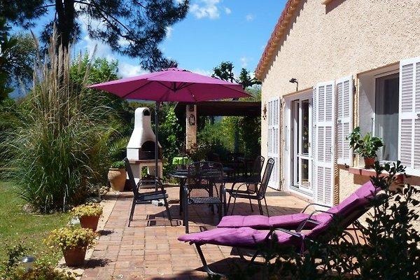 Villa Harmony in Ghisonaccia - immagine 1