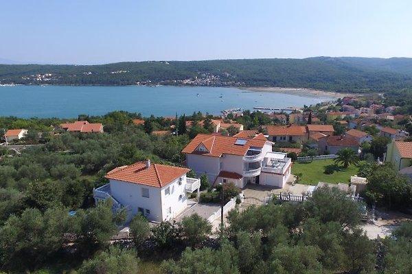 Villa Buric, Isola di Krk in Cizici - immagine 1