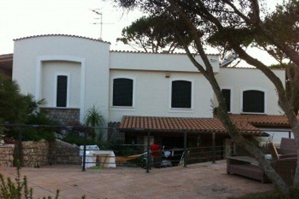 Appartamento Tullio  à Terracina - Image 1
