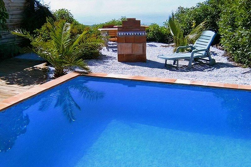 Pool mit Grill, Sitzecke, Terrasse