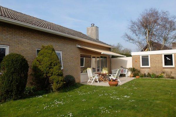 Maison de vacances Domburg  à Domburg - Image 1