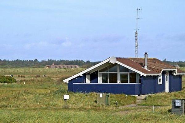 Hvidbjerg Strand à Blaavand - Image 1