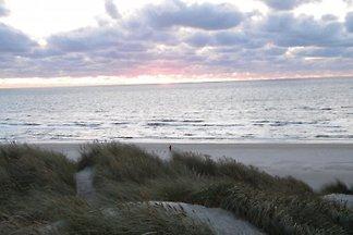 Vejers Strand,  Erste Dünenkette