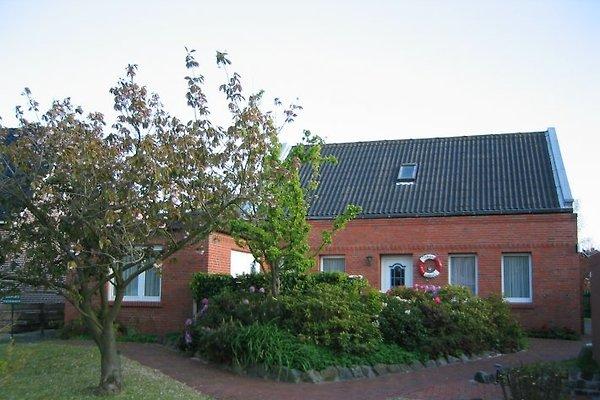 Borkum - Ferienhaus Thiele à Borkum - Image 1
