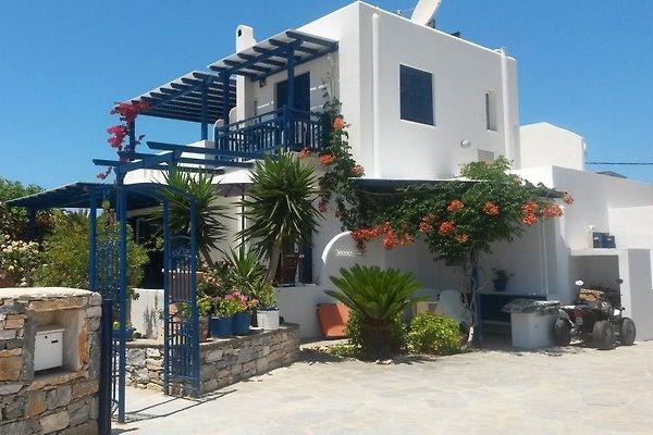 Ferienwohnungen  ASTERAKIA en Naxos - imágen 1
