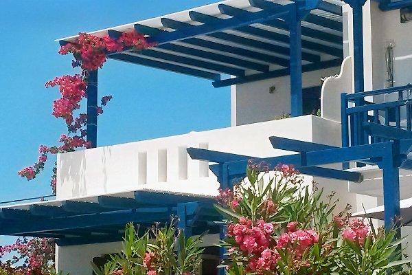 Ferienwohnungen  ASTERAKIA à Naxos - Image 1